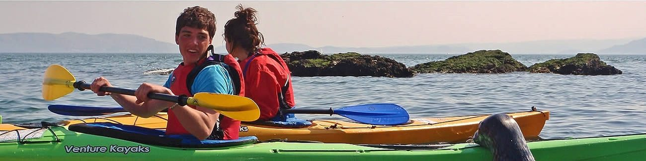 Sea kayaking in colourful boats with a seal pup rest its head on the back of a boat