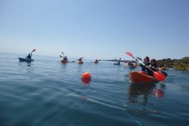 sea kayaking North wales00038