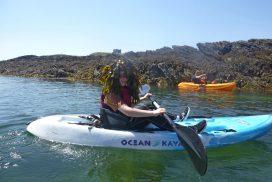 sea kayaking North wales00039