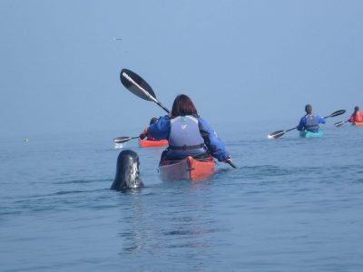 best sea-kayaking activity for kids north wales