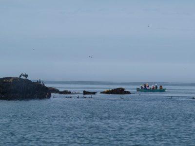 best sea-kayaking activity for kids snowdonia uk