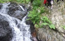 top gorge scrambling activity centre Gwynedd uk